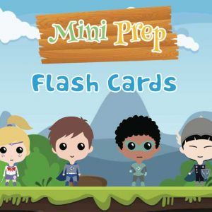 mini-prep-flash-cards